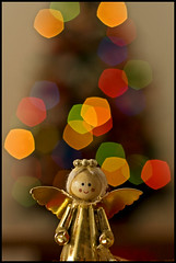 Wishing for a better 2☮1☮!! (Yon Pol) Tags: xmas tree angel canon john wings peace dof bokeh paz lennon johnlennon xmastree pdc warisover ☮ canon430ex 40d eos40d yonpol canon40d