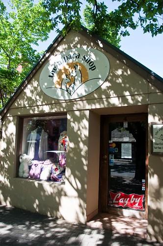 Alpaca Store