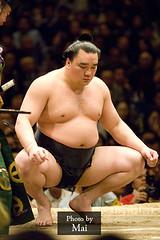日馬富士 画像51