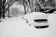 (Jumpin' Bean) Tags: washingtondc winterweather snowmaggedon snowpocalypse2010