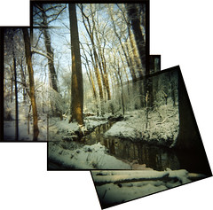 A Snowy Scene (sethadiah) Tags: park morning trees atlanta panorama sunlight snow film water forest georgia holga woods stream path kodakportra400vc trail atlantaga holgarama deepdene