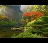 Japenese Garden (Jesse Estes) Tags: fall oregon garden japenese jesseestesphotography