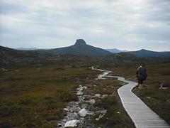 Track to Barn Bluff (Pete Rivett) Tags: trek tassie tassie2010