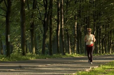 Dýchání při běhu a dýchací systém