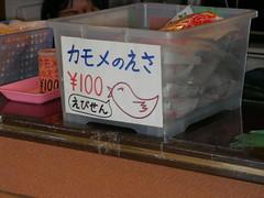 SANY0042 (cecichu425) Tags: japan