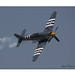 Hawker Sea Fury4