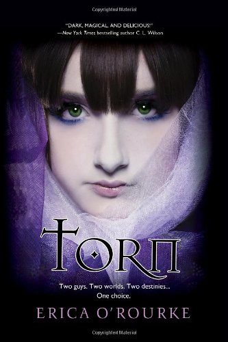 June 28th 2011 by Kensington       Torn (Torn #1) by Erica O'Rourke