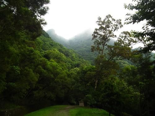 東眼山_29_化石區漂亮的山景_ 20110614