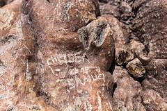 Make your Mark 8311 (Ursula in Aus) Tags: africa namibia adansonia baobab