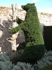 topiary-tastic