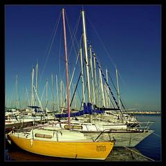 Yellow (m@®©ãǿ►ðȅtǭǹȁðǿr◄©) Tags: france yellow port canon puerto boat barco sigma bluesky martigues provenzaalpescostaazul canoneos400ddigital m®©ãǿ►ðȅtǭǹȁðǿr◄© sigma10÷20mmexdc marcovianna puertodemartigues