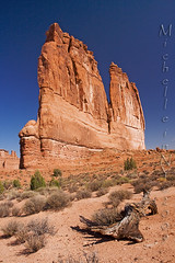 The Organ - Arches National Park (Michelle in NY) Tags: red utah sand rocks desert bluesky archesnationalpark sagebrush theorgan canonefs1022mm courthousetowers canoneos40d michelleinny wwwmichelleneacycom