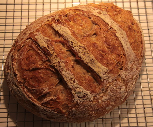 No Knead Bread   style tips December Cooking Recipes