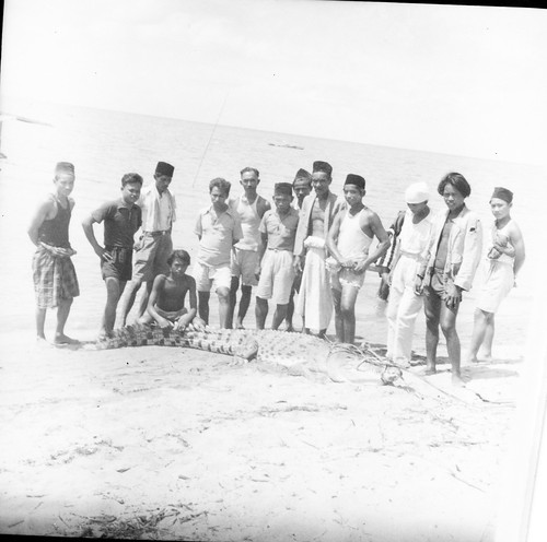 Group of men with captured crocodile