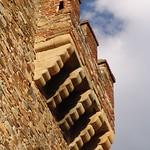 Cáceres: bujaco detalle matacan