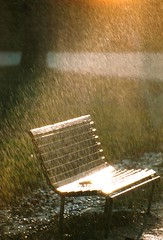 a beautiful rain (omnia_mutantur) Tags: panchina parcosempione parco park luce light luz pioggia rain lluvia milano milan italia italy blench fiatlux chuva sole sun sol raggi rays spot lumiere sottoilcielodimilano