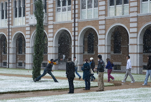 Snow Day at Rice University, click for Flickr ste