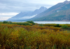 Jackson Lake and Tetons (carfull...) Tags: park lake mountains rocky grand jackson national wyoming np teton