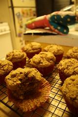applesauce oat bran muffins! (jerkcake) Tags: cake golden vegan baker cranberry apples muffin bake bakedgood veganomicon wholewheatmuffin