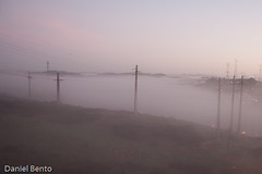 P365/10 Day033 -  Fog