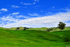 montgomery hill (ta-graphy) Tags: green nature field clouds hill bluesky february bliss niceday greenfields montgomeryhill