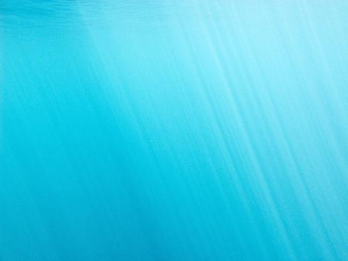 Flores Underwater 01