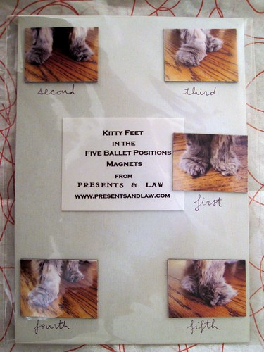 kitty feet magnets
