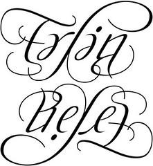 """Erlin Reyes"" Ambigram"