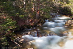 On The Way To The Basin (Matt Currier Photography) Tags: new trees water canon river woods rocks stream newengland nh hampshire basin 7d