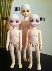 Doll Leaves Dolls FA ( Samantha ) Tags: bjd fa fs safa yosd dollleaves