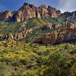 Greens and Browns with a Backdrop of Lost Mine Peak (Big Bend National Park) thumbnail