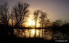 Sunset (ditmaliepaard) Tags: sunset zonsondergang haarsteeg haarsteegsewiel bomen trees theunforgettablepictures