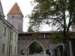 Nunnatorn (magro_kr) Tags: tower wall puerta gate tallinn estonia porta porte tor mur poort citywall eesti stadttor wieza citygate brana brama wiea muryobronne