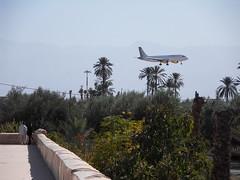 SDC17299 ((RJG)) Tags: gardens plane aeroplane morocco maroc marrakech menara saadi menaragardens hivernage jardinsdelamenara
