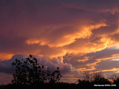 wind and clouds (Marlis1) Tags: trees sunset sky clouds spain explore frontpage tortosa weatherphotography marlis1