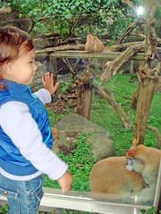 (Vanessa van Dyck) Tags: family taipeizoo trudivandyck december2009