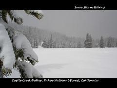 Castle Creek Valley towards Andesite Ridge (pjink11) Tags: california winter snow mountains landscape snowshoe sony cybershot 2006 sierras cinematic hikes dscw1 panography blackwhitephotos flickrestrellas tahoenf vispix
