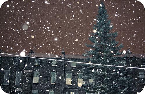 snow week 1