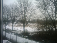 SNOW SCENE... (vicki127.) Tags: trees snow field january2010 androidphone flickrdroid vickiburrows