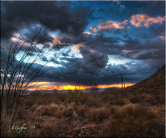 Another Desert Sunset (L Geoffroy) Tags: sunset red arizona cactus cloud storm southwest clouds photoshop landscape landscapes sony az hdr cs4 photomatix tonemapping tonemap colorefex hdrpool vertorama dslra350 dslr350 sonydslra350 lgeof