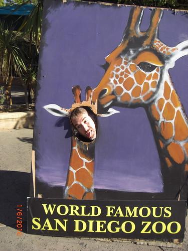 Jason-giraffe