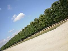 Parc St. Germain en Laye (alvarosa) Tags: park paris stgermain allee