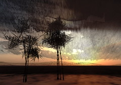 To love till Orion rises in the day (Hitomi Mokusei) Tags: china landscape poetry bamboo sl secondlife tangdynasty lament virtualworld chinesebrushpainting astonleisen anonymouschinesepoet