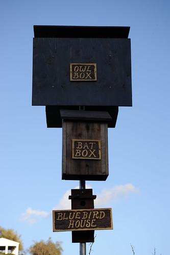 益鳥用の巣箱