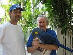 Forrester's Secret Garden of Art & Parrots (Shoestring Weekends) Tags: keys florida keywest parrots floridakeys conch conchrepublic floridaattractions nancyforrester shoestringweekendscom forresterssecretgardenofartparrots budgetfriendlyvacation budgetfriendlyvacations