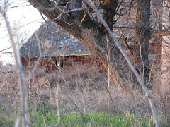 outside the ranch[7] (RoxyFox04) Tags: road ranch family sunset red horses love home up barn outside happy dance kid cowboy ride cows idaho dirt rodeo middleton barrelracing cowgirlup