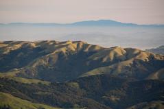 Mt. Tam hills Photo