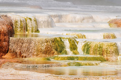 Canary Springs (NaturalLight) Tags: park hot spring terraces national mammoth springs yellowstone a