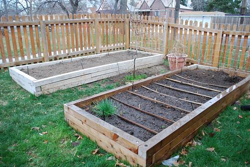 starting the garden 2010