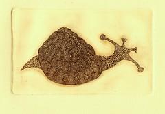 улитка фибоначи - стандарт 001 (tim.spb) Tags: original etching postcard small snail ornament plates desigh улитка открытки графика малые fibonachi aquafortis формы фибоначи печатные